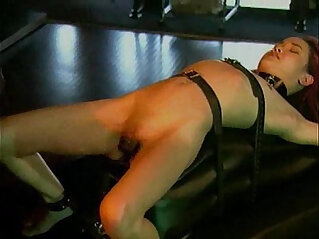 Kitty Bondage Fantasy